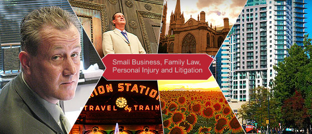Small Business, Family Law, Personal Injury and Litigation
